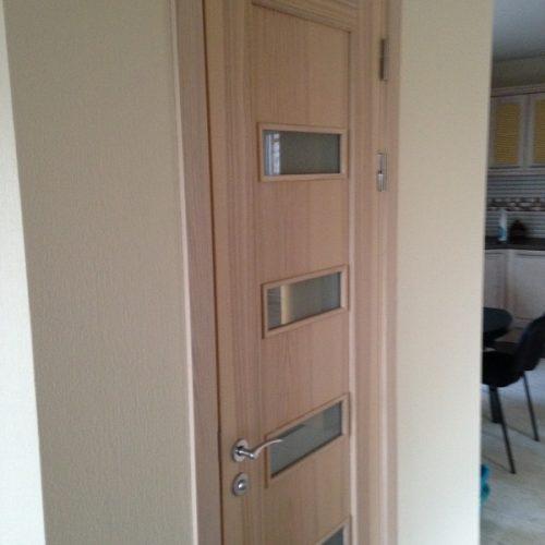 Durvis viens attēls (14)