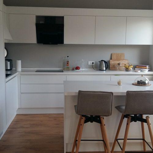 Virtuves 12.07 (1)